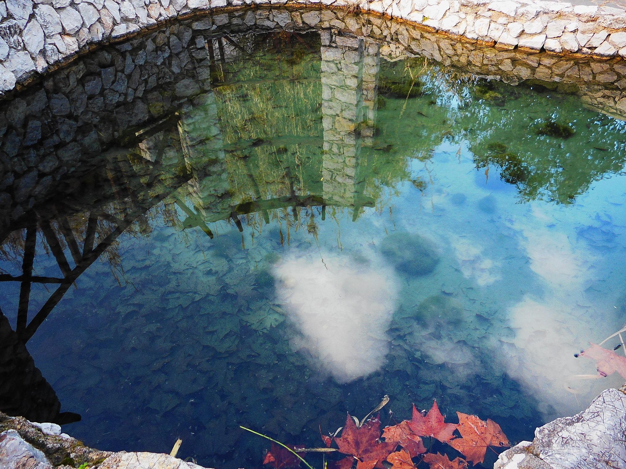 Το εγκαταλελειμμένο Γκιζάνι της Ψίνθου το 2015