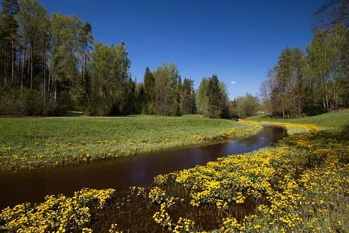 jõgi kevad varsakabjad nurtu nurtunõlva