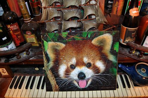 Red Panda Puzzle (May 14 2013)