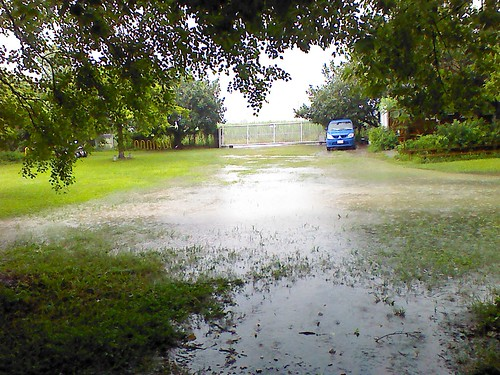 久旱逢豪雨