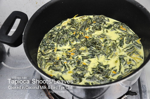 Tapioca Leaves Cooked in Coconut Milk 5