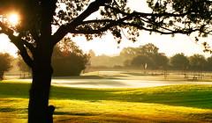 Lexden Wood Golf Club