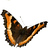 the Butterfly Gallery - P1 C1 please group icon