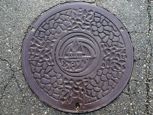 Soryo HiroshimSo a , manhole cover (広島県総領町のマンホール)