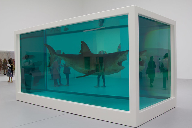 The shark - Damien Hirst - Doha 2013