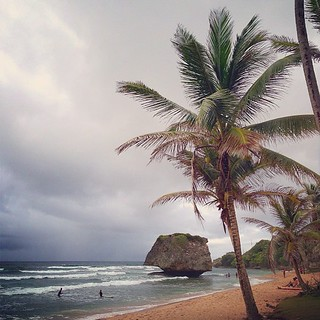 Rainy, Hot Bathsheba Day