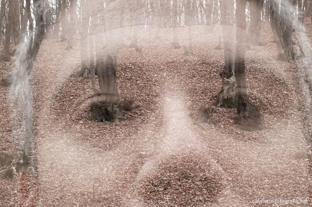 Poveste (întârziată) de Helloween. Expuneri multiple cu Nikon D90 10749565165_11bdf92072_z