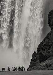 'Torrent' - Skógafoss, Iceland