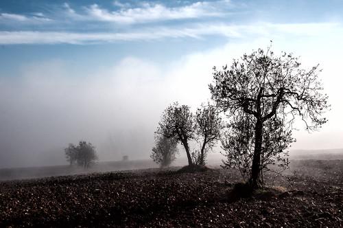 """""""di aria"""" by CristianaCascioli"""