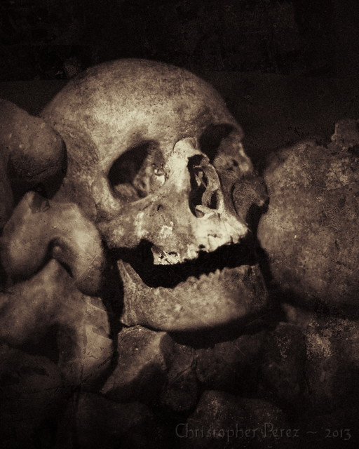 Ancestors Regard