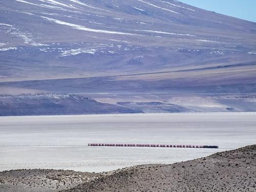 chile train tren salar ferrocarril ollagüe regióndeantofagasta