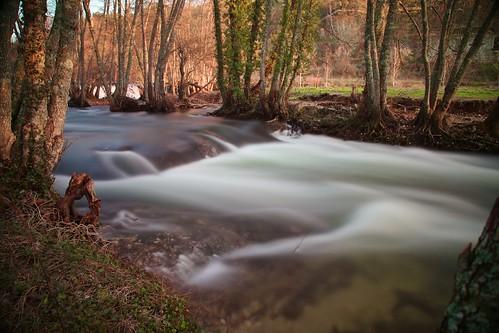 River Dão.