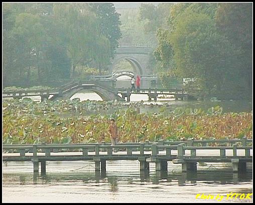 杭州 西湖 (其他景點) - 244 (在西湖十景之 蘇堤上的誇虹橋望向西湖十景之 曲婉風荷)