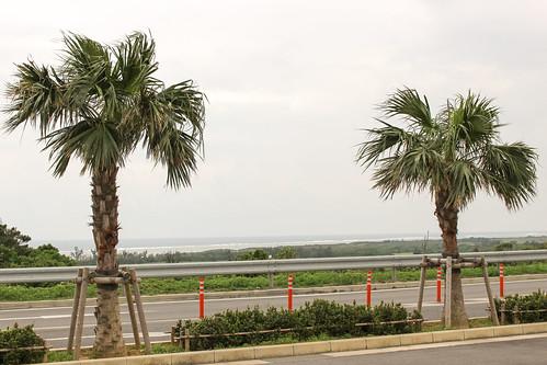 駐車場の向こう側は海