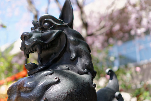 川崎稲毛神社狛犬