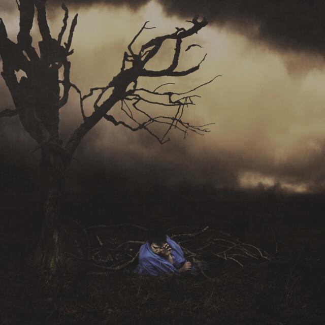 Albin Thelander - in roots