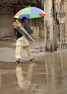 China ki Chatri (Umbrella)
