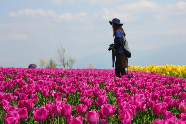 2014-05-04_00945_九州登山旅行.jpg