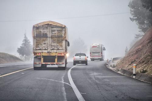 méxico flora camino carretera paisaje jr puebla niebla pulque hidalgo vehiculos producciones