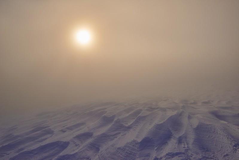 Fog - Selibüel