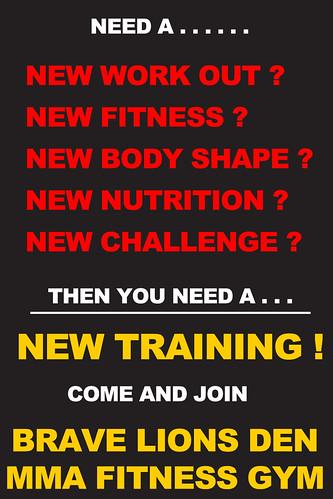 Brave Lions Den MMA Fitness Gym