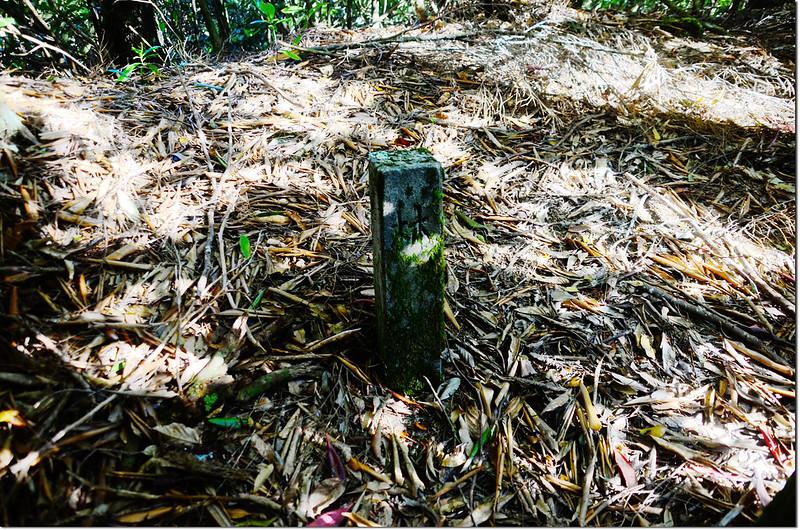 「林」字水泥樁柱