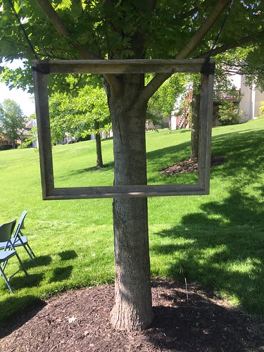 Picture frame in a tree. Allie's Graduation! | by LauraGilchrist4