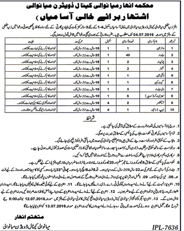 Mianwali Kinal Division Basic Scale Jobs