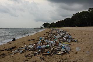 Litter on Singapore's ECP