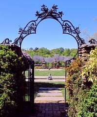 Welcome to Dumbarton Oaks Gardens
