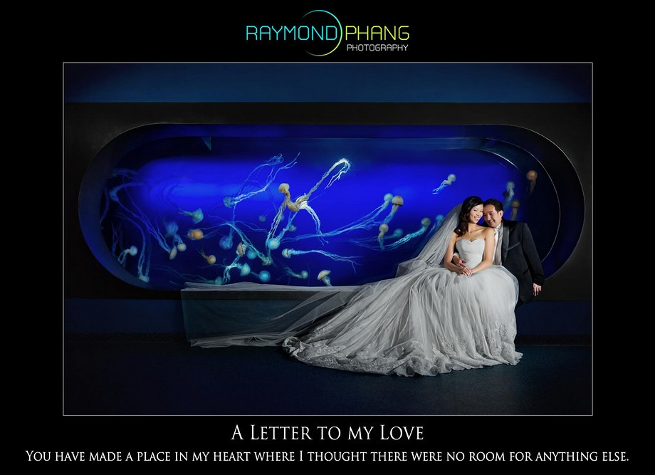 Raymond Phang Conceptualised Pre-Wedding