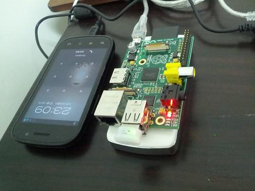 Nexus S & Pi