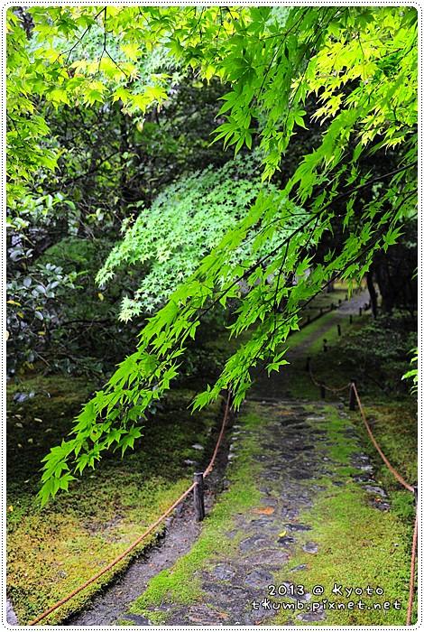 苔寺20130519-142012.jpg
