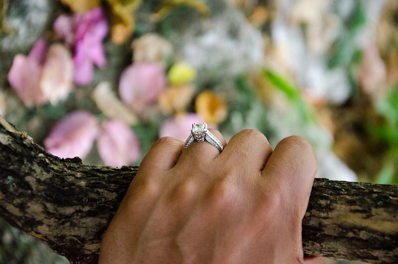 engagement ring in Hope Gardens (Kingston, Jamaica)