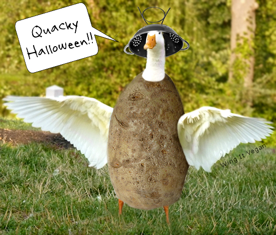 Happy Halloween from Curly and the gang!