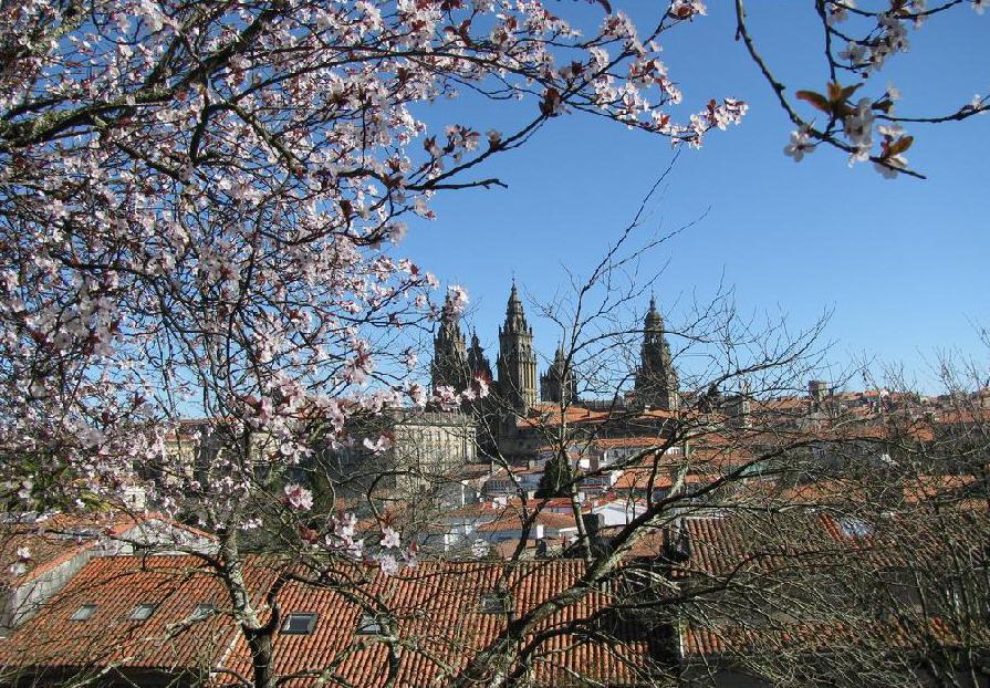 4. Vista de Santiago en primavera. Autor, Compostelavirtual