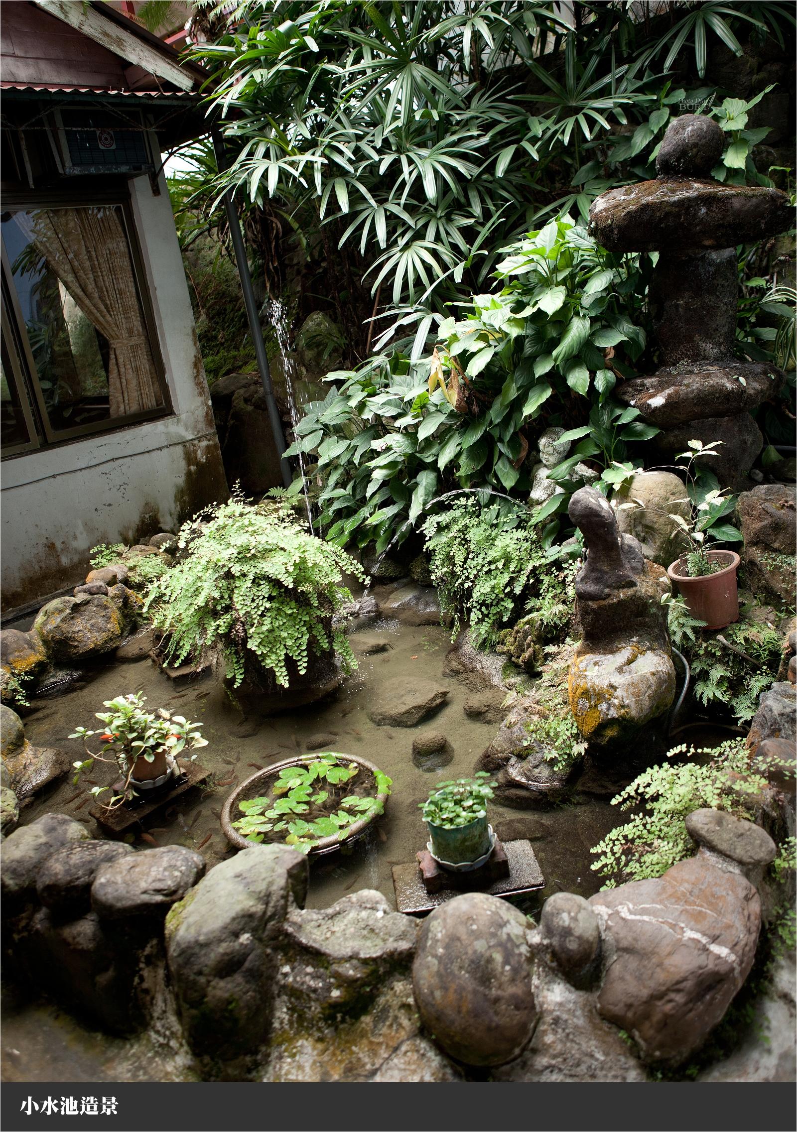 小水池造景