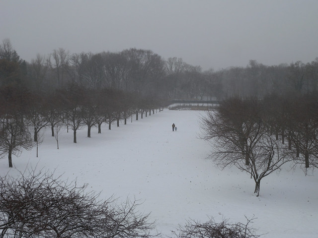 BBG's Cherry Esplanade during the December 14 snowstorm. Photo by Tony Morosco.