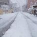 * Snowy day *:・. by Saori_