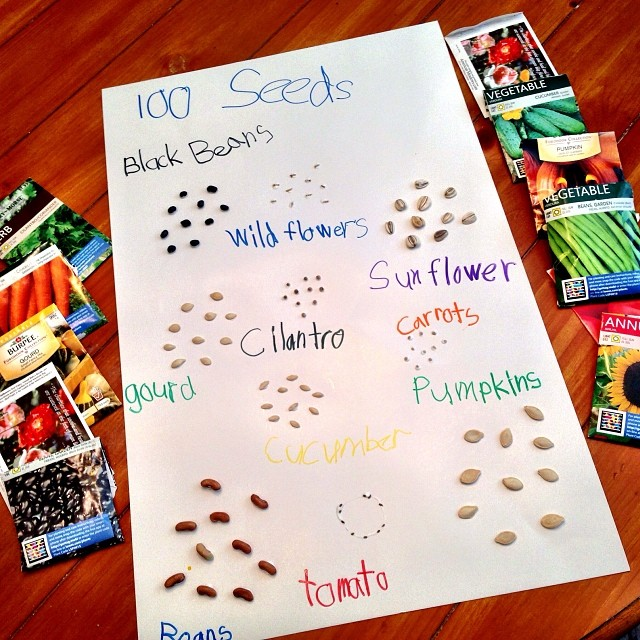 100 Day of School project done... Just used stuff from around the house. I am so ready for Spring I got last years seed packets out!! Not the neatest, but he isn't graded on this one so we just had fun with it... Which was nice! #100daysofschool #thisfrid
