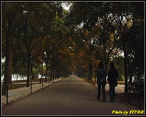 杭州 西湖 (其他景點) - 256 (在西湖十景之 蘇堤 左面是西湖 右面是西裡湖)