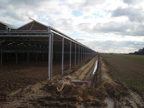 Schattenkultur mit Entwässerungsgraben