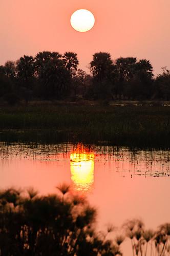 sunset northwest botswana maun thamalakane