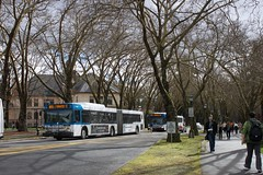 CT buses on the move