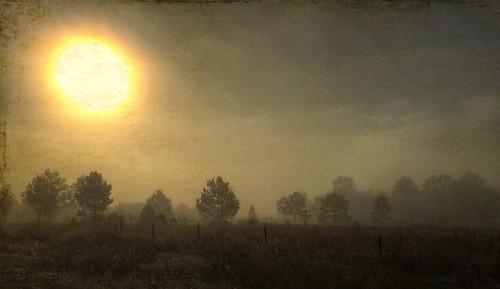Blaze in the haze