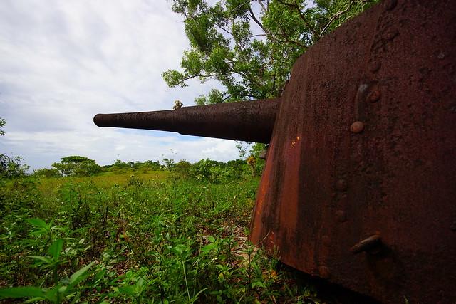ERH & Jap. Cannon DSC02809