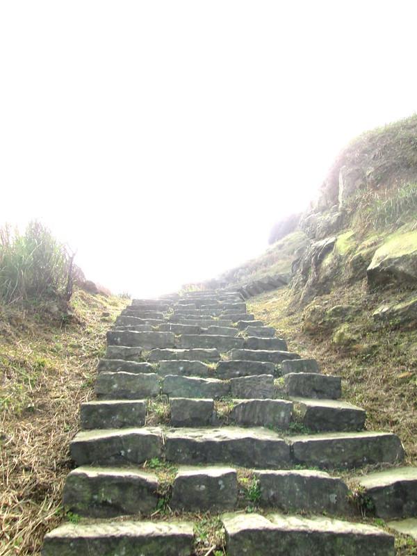 繼續往上爬
