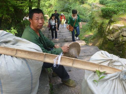 Fujian-Wuyi-Shuillandong-Dahongpao (16)