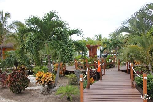 Kreuzfahrt Miami-Cozumel-Belize-Roatan-Cayman Isle 80