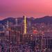 City Lights by William C. Y. Chu